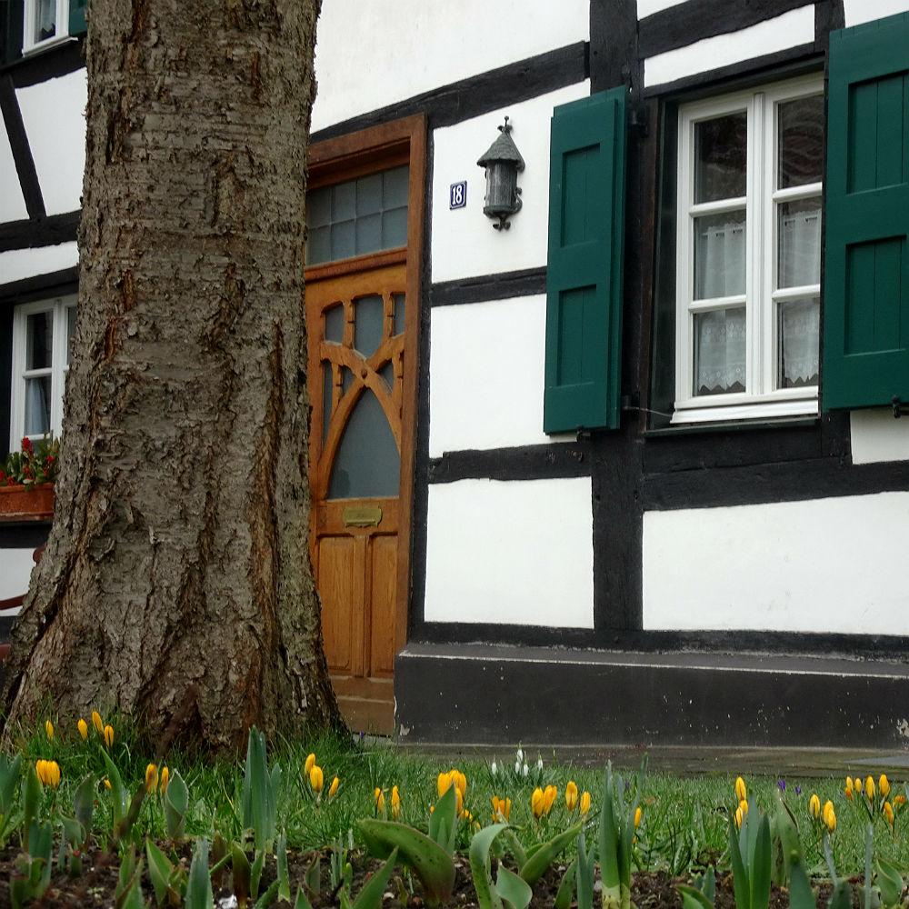 Fachwerkhaus im Frühling