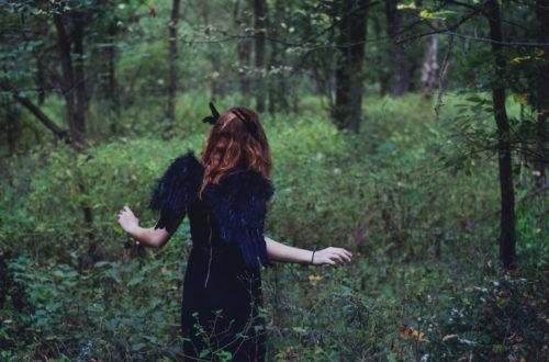 Krähe im Wald