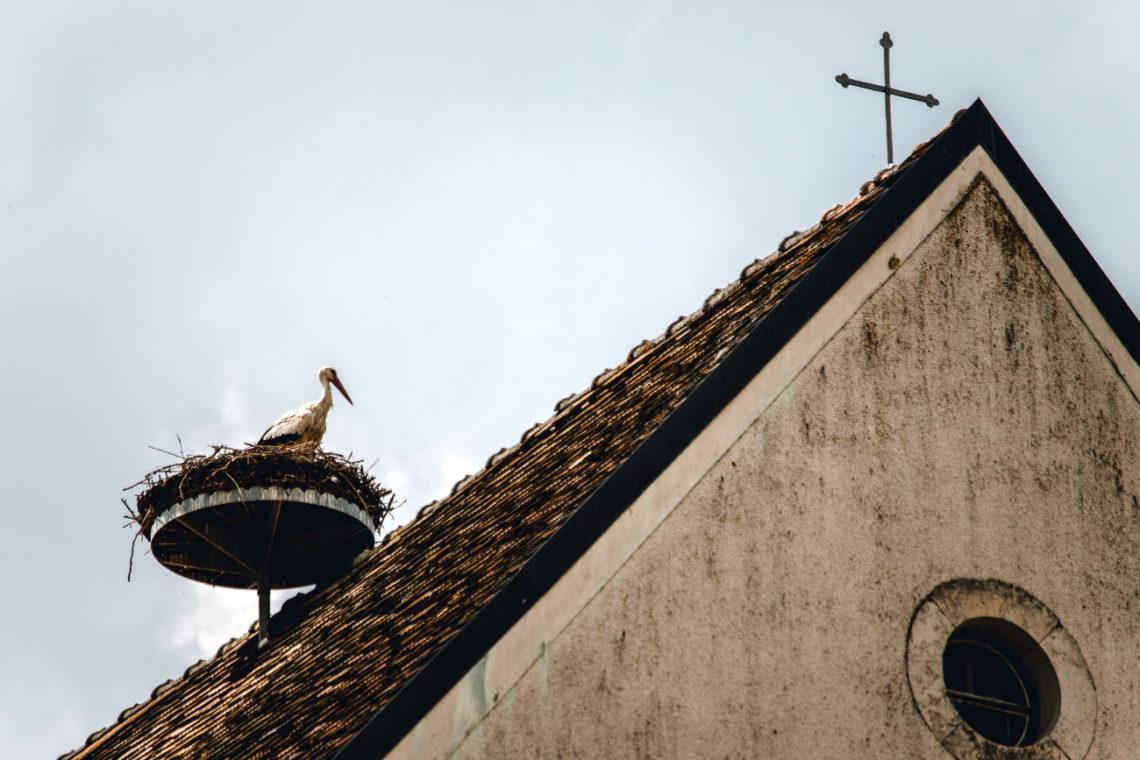 Storch und Kreuz