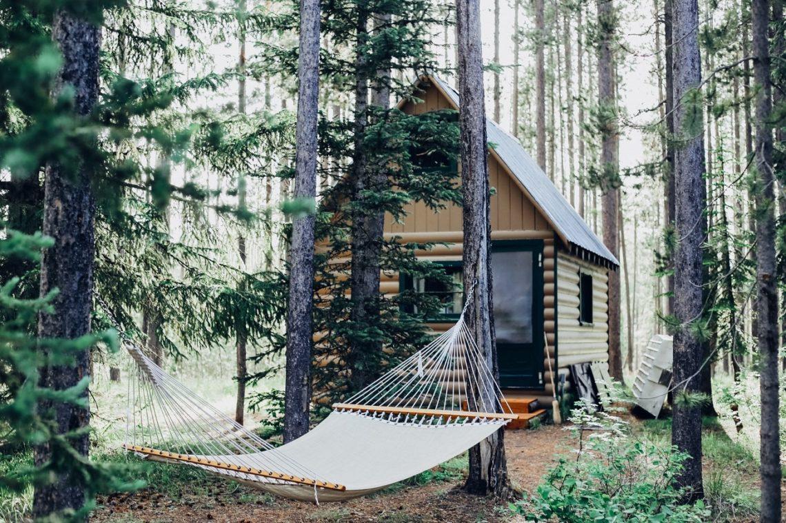 Hütte im Wald