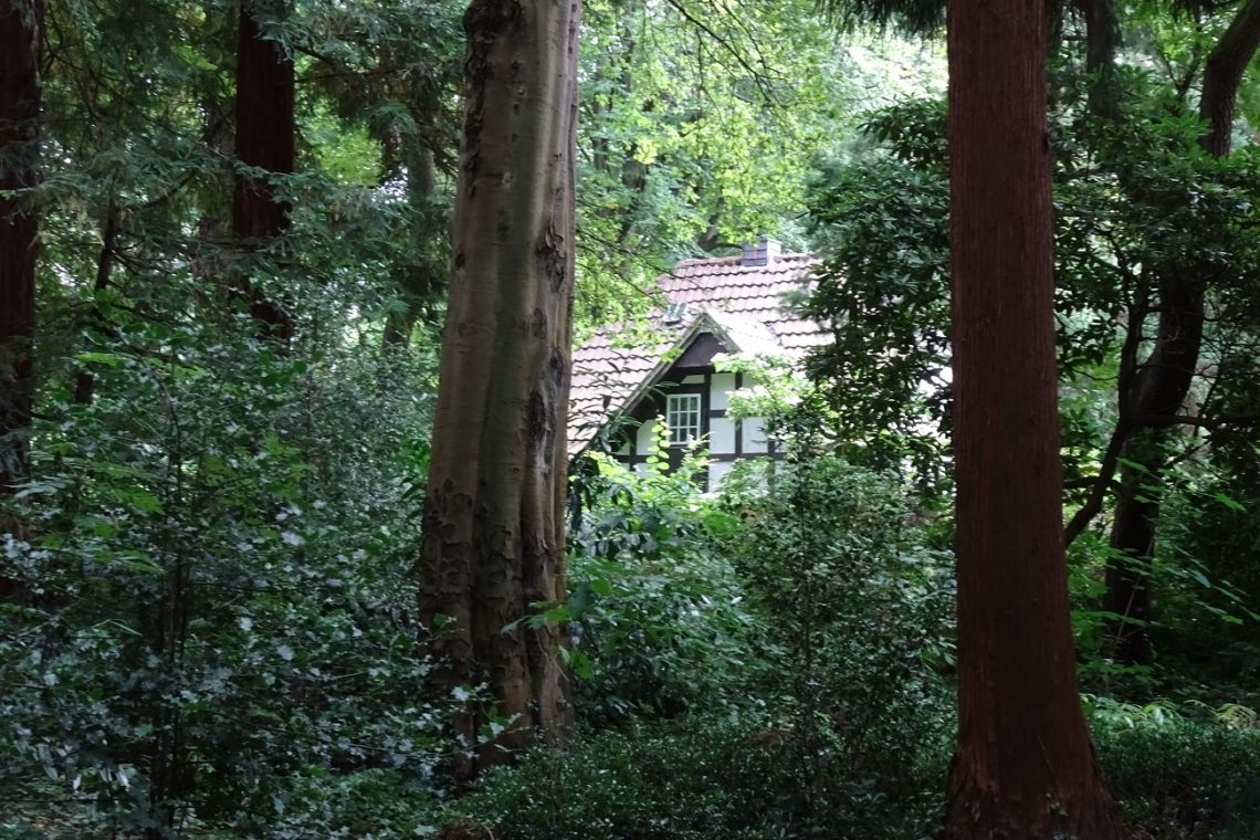 Haus in der Sequoiafarm